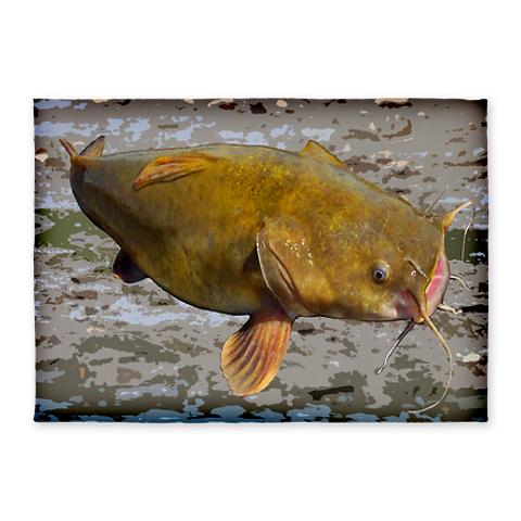 big_flathead_catfish_5x7area_rug