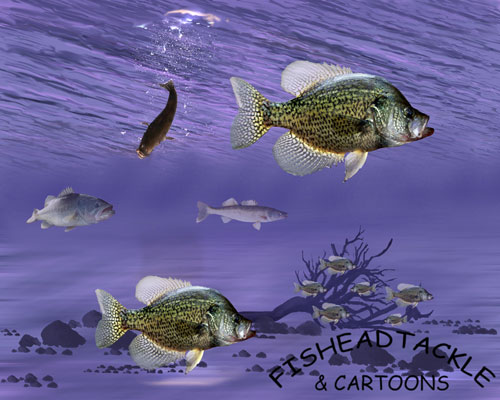 Crappie water
