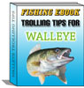 Walleye ebook