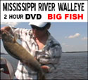 Walleye dvd