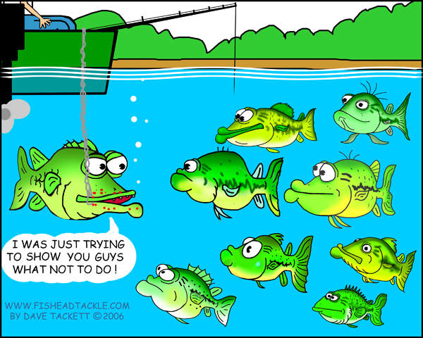 Fish head fishing cartoons for Where are the fish biting