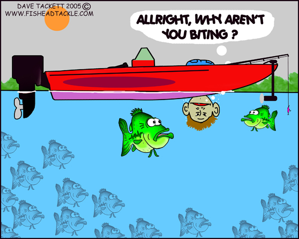 View topic who would for Are fish biting today