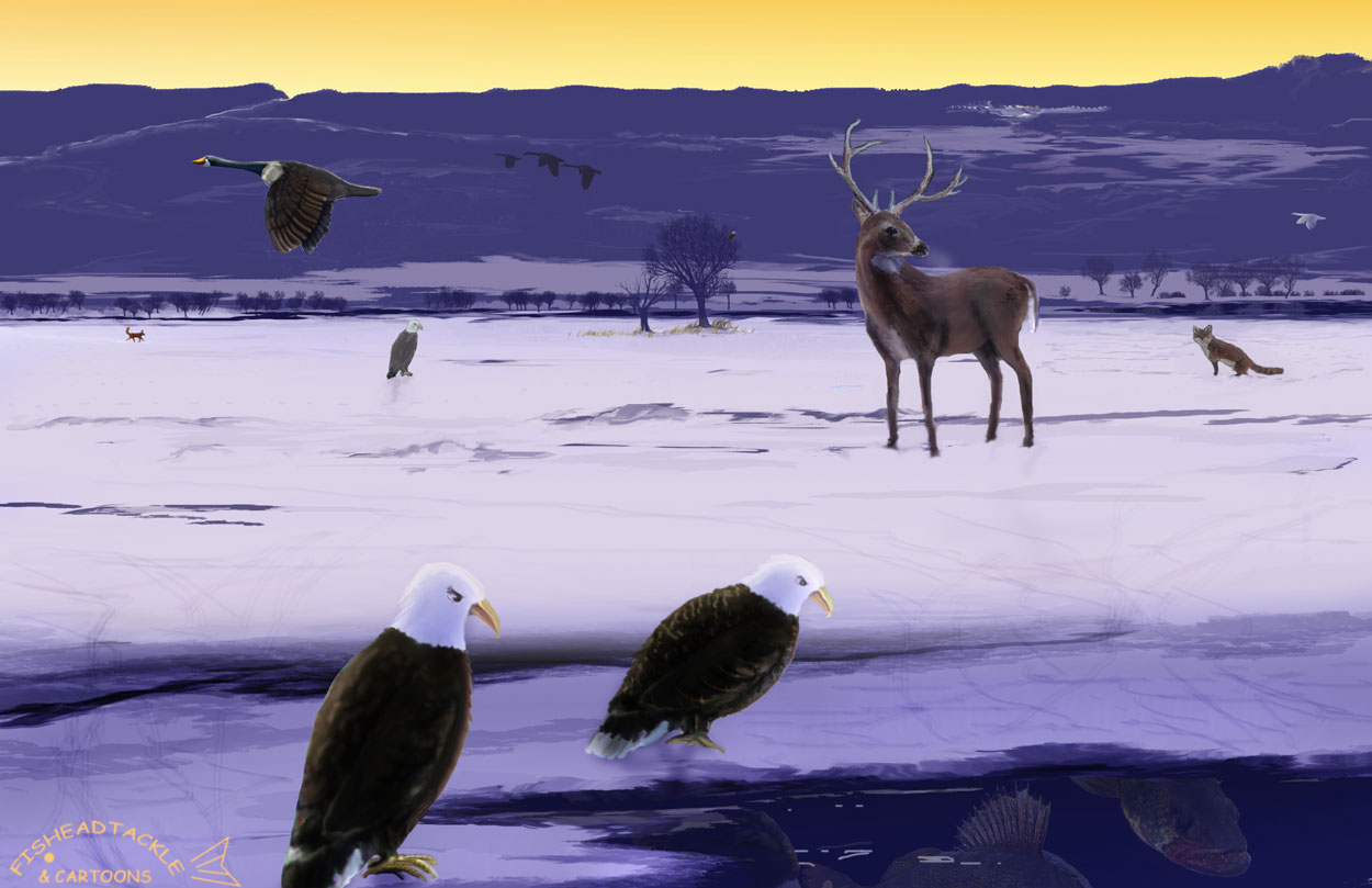 fishing winter eagles widescreen