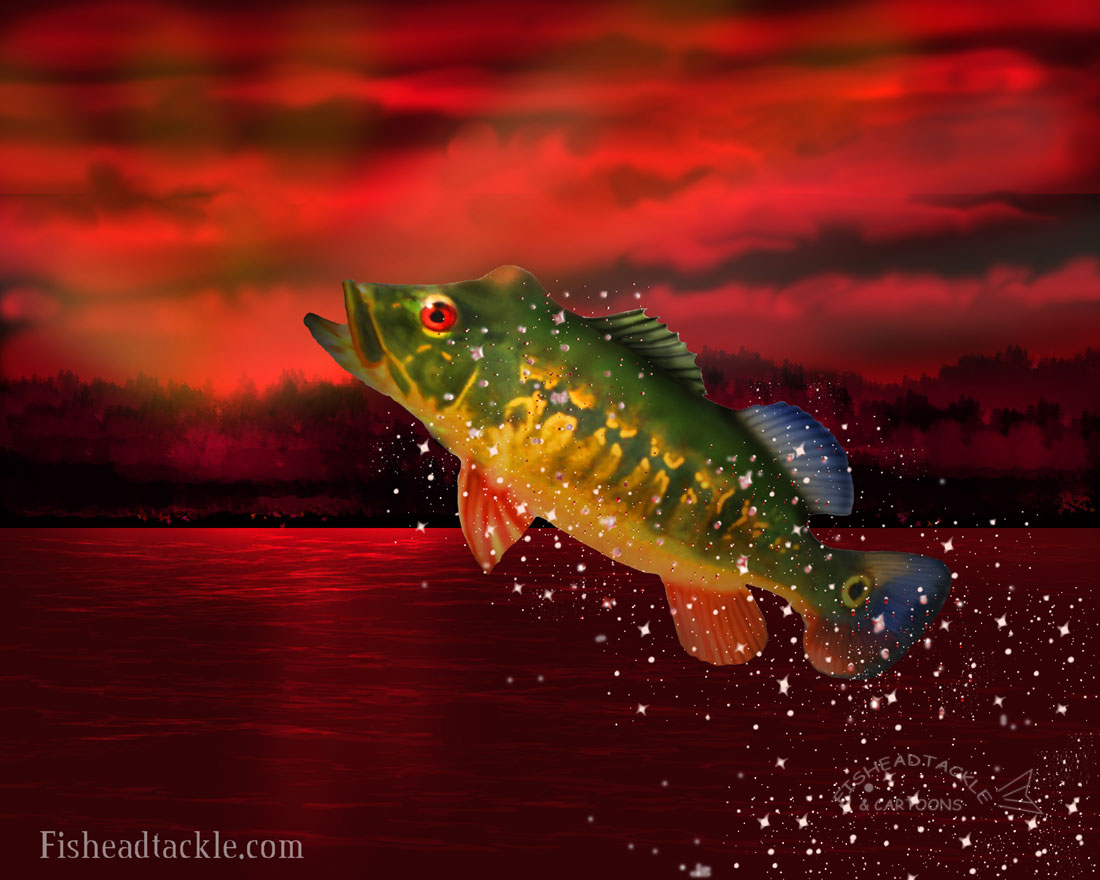 red peacock bass