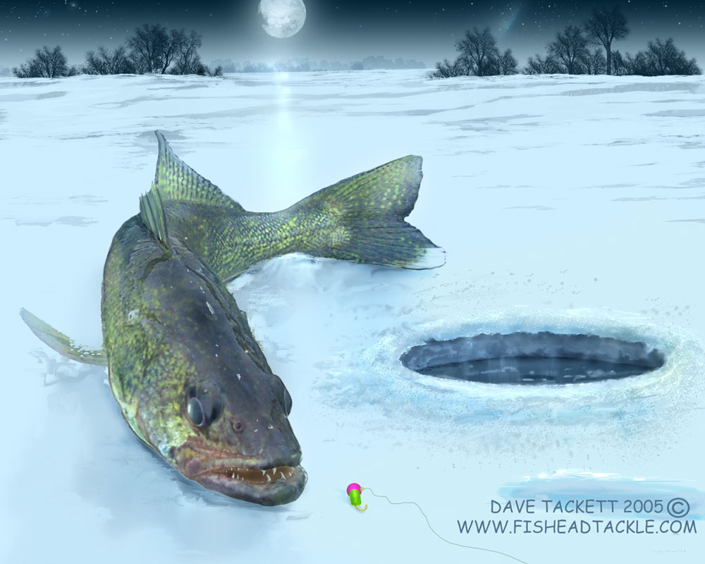 Walleye art 4 for Ice fishing walleye videos